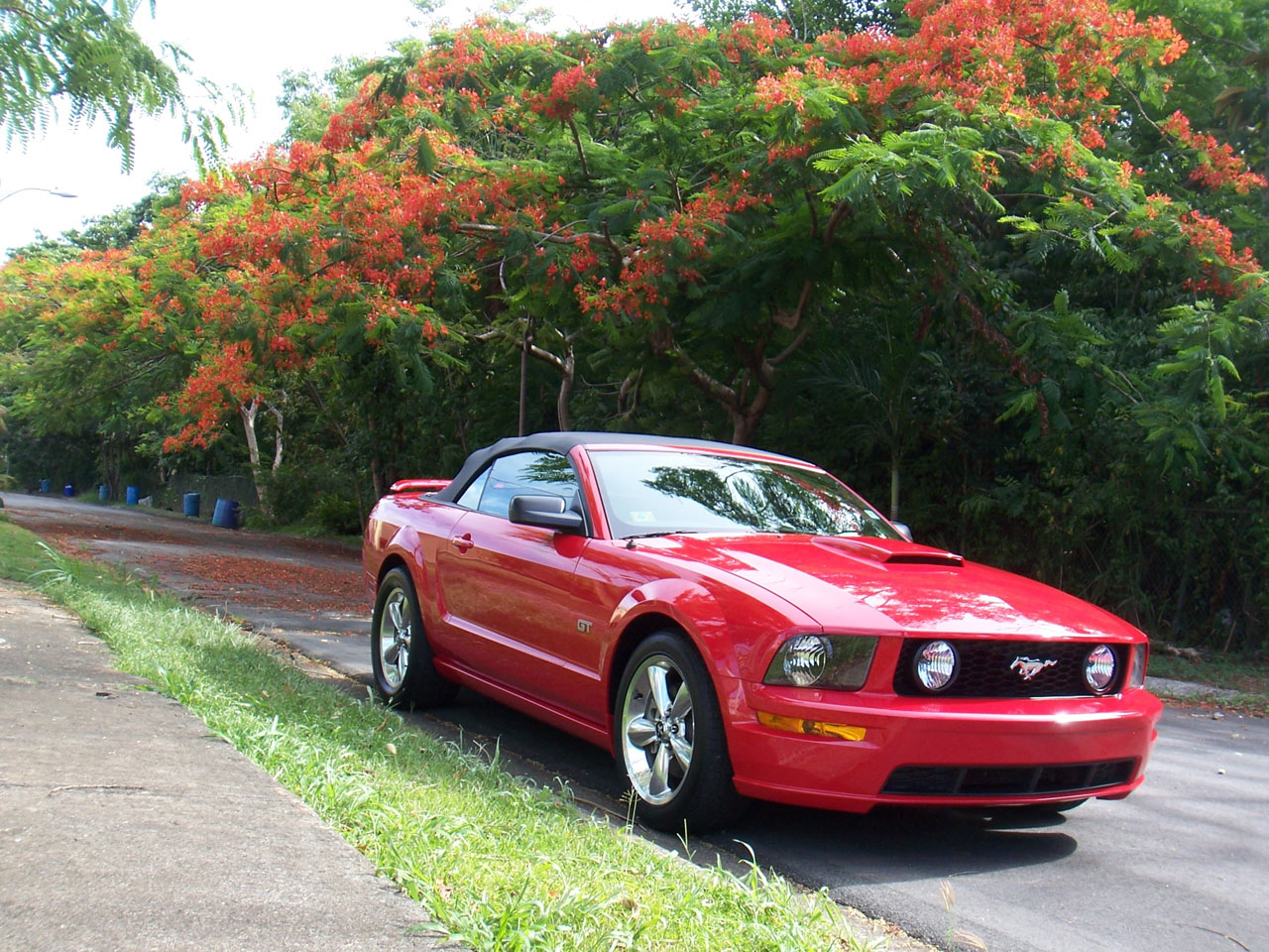 Red 2007 Ford Mustang Convertible GT Roush Stage 1